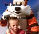 Calvin and Hobbes (television film)