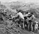 Second Battle of Guam (1944)