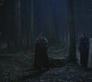 Forêt des ténèbres