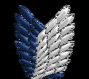 Pegasus Wings Pirates