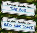 Guide to: The Bus and Bad Hair Days