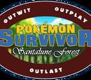 Santalune Forest Contestants