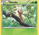 Weedle (XY TCG)