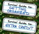 Guide to: Getting Organized and Extra Credit