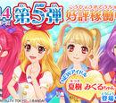Data Carddass Aikatsu! 2014 Series - Part 5