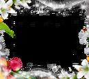 Eileen y la flor de la Sakura
