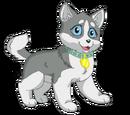 Juno (dog)