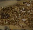 Mapa świętych kapliczek