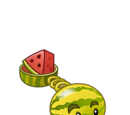 Melon Slice Pitcher