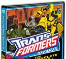 Gcheung28/Wikia Qwizards: Transformers