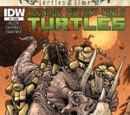 Teenage Mutant Ninja Turtles: Turtles in Time issue 1