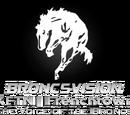 BroncsVision