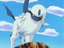 Absol anime.png