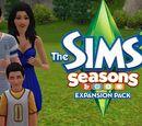 The Sims 3 Seasons LP