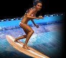 Волновая установка «Солнце, сёрфинг и вода»