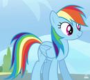 Rainbow Dash/Galeria