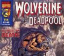 Wolverine and Deadpool Vol 1 114
