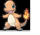 Fire Pokemon