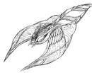 Concept Art - Rebirth of Mothra 2 - Aqua Mothra 10.png
