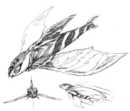 Concept Art - Rebirth of Mothra 2 - Aqua Mothra 6.png