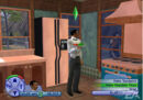 Sims 2 review 09.jpg