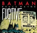 Bruce Wayne: Fugitive (Collected)