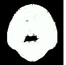 Mask-rutger.png