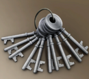 Key (10 Pack)