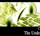 Chapter 8 - The Underworld