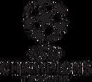 Liga dos Campeões da UEFA