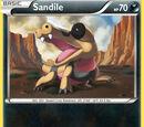 Sandile (Flashfire 56)