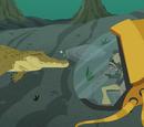Crocogator Contest