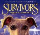 Sweet's Journey/Cliffnotes