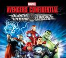 Avengers: Los archivos secretos - Black Widow y Punisher