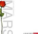 A Beautiful Lie (álbum)