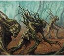 Black Forest Dryads