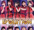 Morning Musume '14 Concert Tour Haru ~Evolution~