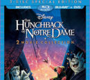 The Hunchback of Notre Dame (film)