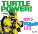 Turtle Power (song)