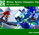 Mario & Sonic at the Sochi 2014 Olympic Winter Games Dream Events