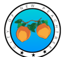 City of New Peachtree