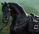Exile's Horse