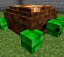 Turtle Caves
