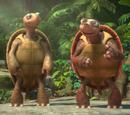 Tartarugas Capoeiristas