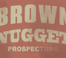 Brown Nugget Prospecting