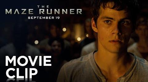 "The Maze Runner ""Fight"" Clip HD 20th Century FOX"