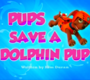 Pups Save a Dolphin Pup/Gallery