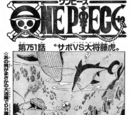 Chapter 751