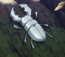 Gran Escarabajo Blanco Rey