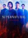 Supernatural Season 10 Poster HD + Text.png